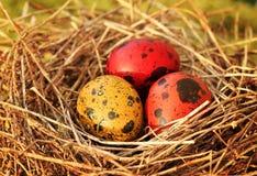 复活节彩蛋篮子 免版税库存图片