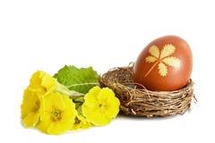 复活节彩蛋自然地上色与葱果皮和报春花花 免版税库存图片