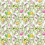 复活节彩蛋草 无缝的样式-逗人喜爱的鸟,花,蝴蝶 水彩 库存图片