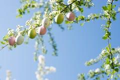 复活节彩蛋装饰 免版税库存照片