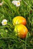 复活节彩蛋隐藏的草绿色 库存照片
