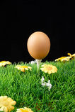 复活节彩蛋高尔夫球发球区域 库存照片