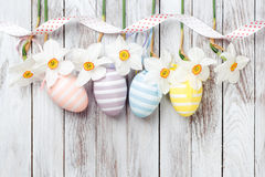 复活节彩蛋,在白色木背景的新鲜的春天黄水仙 看板卡复活节 免版税库存照片