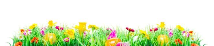 复活节彩蛋,花草甸,被隔绝 免版税库存图片
