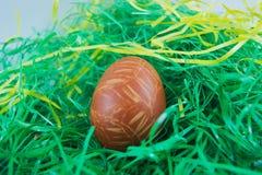 复活节彩蛋绘了壳葱的自然颜色 库存照片