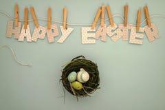 复活节快乐-巢用鸡蛋 免版税库存照片