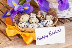 复活节快乐-鸡蛋和蓝色虹膜 库存图片