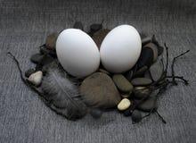复活节构成用鸡蛋和羽毛 免版税库存图片