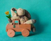 复活节概念用女用连杉衬裤兔子和郁金香 免版税库存图片