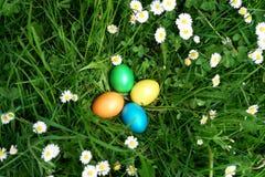 复活节狩猎鸡蛋在草甸 免版税库存照片