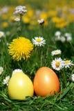 复活节狩猎鸡蛋在草甸 免版税库存图片