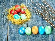 复活节猫杨柳和复活节彩蛋在地道背景 看板卡愉快的复活节 免版税库存图片