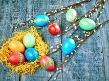 复活节猫杨柳和复活节彩蛋在地道背景 看板卡愉快的复活节 免版税图库摄影