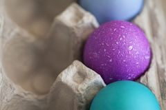 复活节的三个色的鸡蛋在蛋纸盒 免版税库存照片