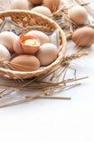复活节的有机鸡蛋 免版税图库摄影