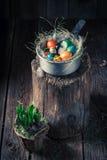 复活节的生态鸡蛋在土气村庄 免版税库存照片