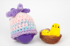 复活节的鸡蛋 库存照片