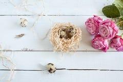 复活节背景用在巢和桃红色玫瑰的鹌鹑蛋 免版税库存照片