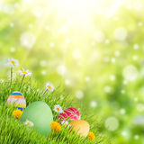 复活节自然假日背景 库存图片