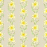复活节花卉无缝的样式 库存图片
