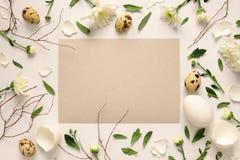 复活节花卉背景 免版税图库摄影