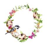 复活节花圈用鸡蛋,在草,花的鸟 来回的框架 水彩 库存照片