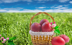 复活节蛋糕和红色的复活节彩蛋 免版税图库摄影