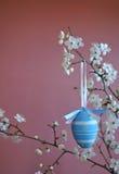 复活节装饰用蓝色鸡蛋 免版税库存照片