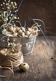 复活节装饰用鹌鹑蛋和分支 库存照片