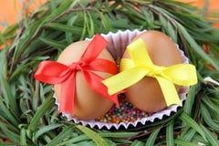 复活节装饰:与鞋带丝带的两个黄色鸡蛋在绿草枝杈在橙色背景筑巢 库存图片