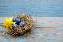 复活节装饰 在巢的鸡蛋在木头 库存照片
