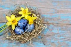 复活节装饰 在巢的鸡蛋在木头 免版税库存照片
