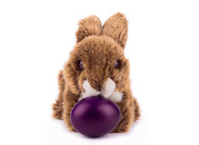 复活节长毛绒兔子 免版税图库摄影