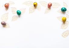 复活节颜色在白色背景的鹌鹑蛋,叶子从p切开了 库存照片
