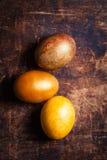 复活节贺卡用五颜六色的鸡蛋 复活节,家庭, holida 免版税库存图片
