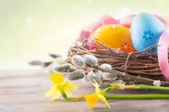 复活节 在巢的美丽的五颜六色的鸡蛋与春天开花 免版税图库摄影