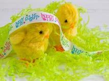 复活节-在白色木背景的两只愉快的复活节小鸡 库存照片