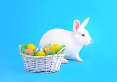 鸡蛋逗人喜爱的兔宝宝和篮子在蓝色背景的 免版税库存图片