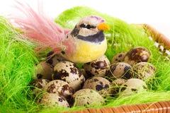 复活节绿色篮子巢用鹌鹑蛋 库存图片