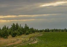夏令时 与穿过领域和绿色草甸的地面乡下公路的晴朗的夏天风景 美丽的白色云彩 库存图片
