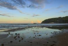 夏令时 Gargano海岸:Portonuovo海滩维耶斯泰:打破在含沙海岸线的波浪在日落以后 普利亚,意大利 免版税库存照片