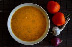夏南瓜汤用蕃茄、大蒜和葱在一个白色碗 免版税图库摄影