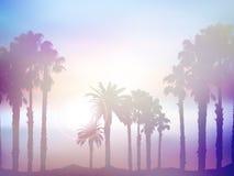 夏天与减速火箭的作用的棕榈树风景 皇族释放例证
