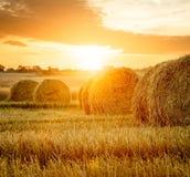 夏天与干草捆的农田在日落 免版税图库摄影