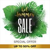 夏天与热带棕榈leaves_10的销售背景 图库摄影