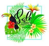 夏天与热带植物的销售构成和toucan 免版税库存照片