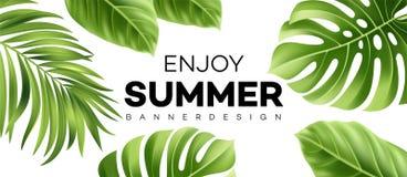 夏天与热带植物的销售横幅 也corel凹道例证向量 库存例证