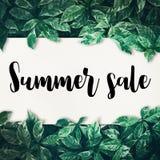 夏天与绿色叶子的销售文本 图库摄影
