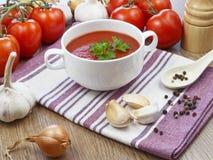 夏天与菜的gazpacho汤 免版税库存照片