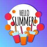 夏天与饮料的背景横幅 皇族释放例证